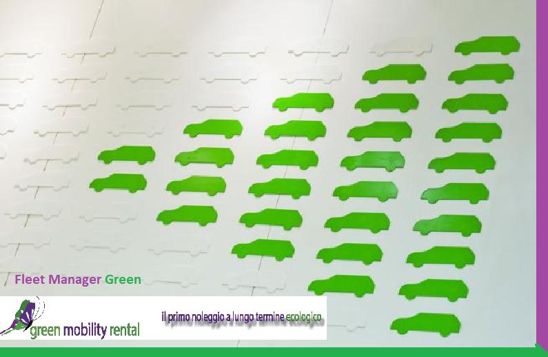 fleet manager green